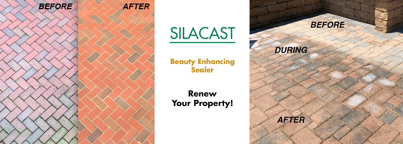 Silacast - beauty enhancing sealer.